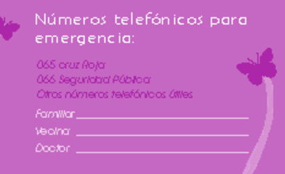 Folleto9x5_frente