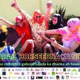 16_days_poster_somali_final