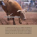 Spanish_bull_ad