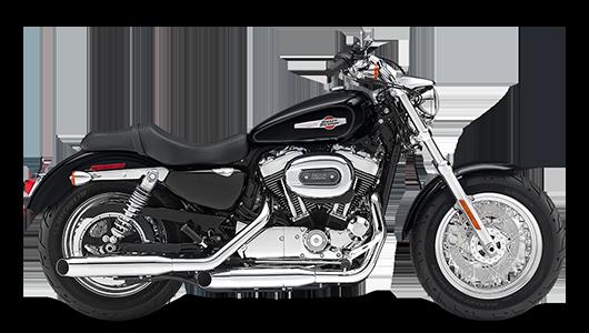 Stock Photo of 2017 Harley-Davidson 1200 Custom