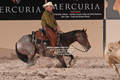 2014 south point futurity 1-014