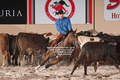 2014 south point futurity 1-021