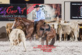 2017 pccha holy cow futurity 1-004