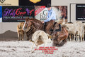 2017 pccha holy cow futurity 1-003