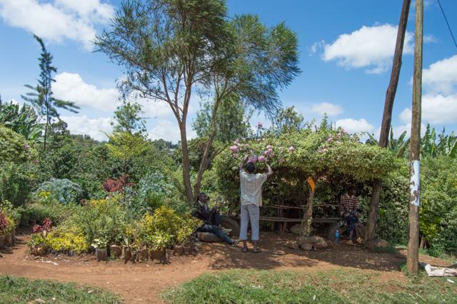 Flower vendor Kenya