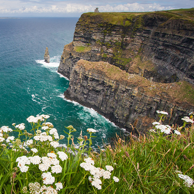 ireland-spring