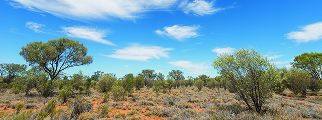 Packing tips for the Australian Outback