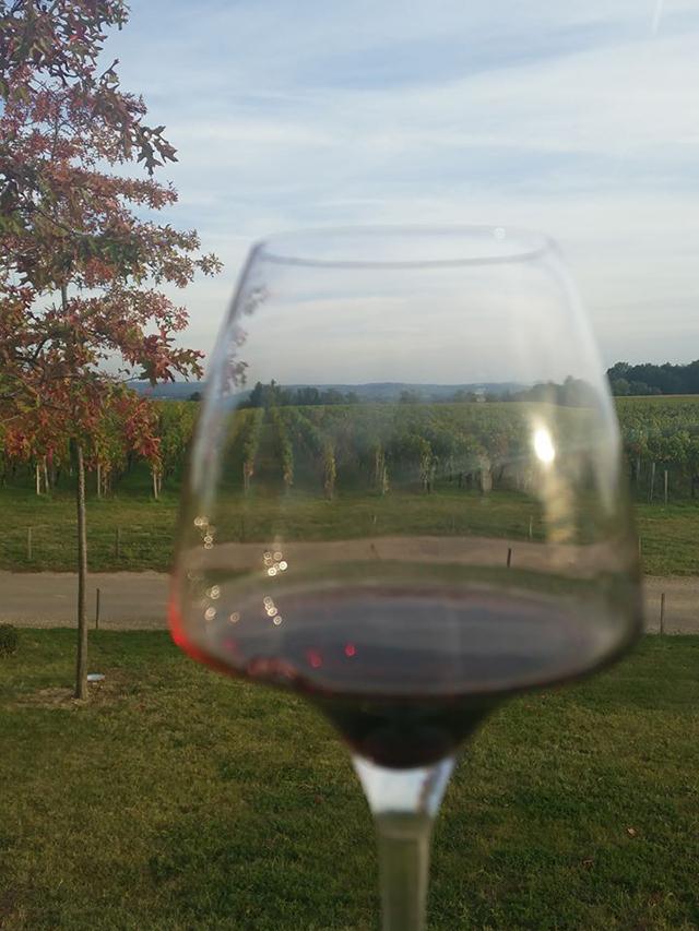 Enjoying wine in La Rochelle, France