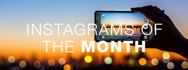 Top Instagrams of the month