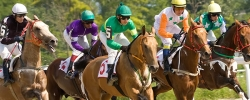 What you might not know about the Kentucky Derby