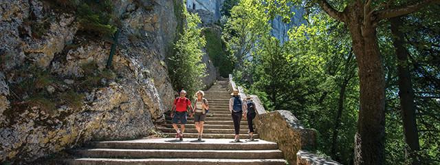 Sainte Baume Walk 6