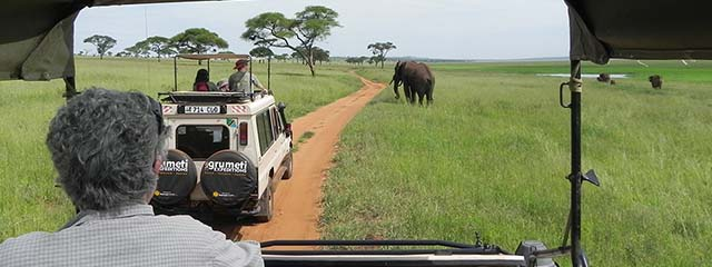 Tips for traveling in Tanzania Wildlife Safari