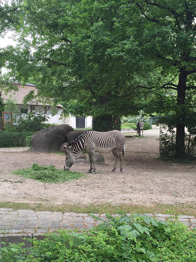 Berlin Zoo, Germany