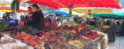 Follow Laura on tour: Perusing an outdoor market