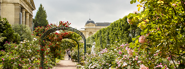 Botanical gardens in Paris, France