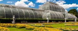 6 Botanical gardens to visit while traveling