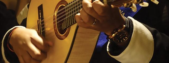 Spanish guitar, musician, fado guitar