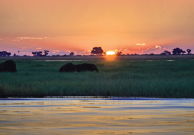 Sunset Chobe National Park