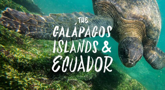 Galapagos-Islands-Ecuador-header
