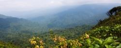 Travel Spotlight: Central & South America