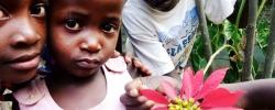 Spotlight: Rose of Charity – Victoria Falls, Zimbabwe