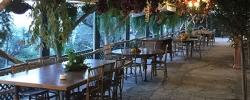 Memories from Sorrento: Farmhouse dinner & wine tasting