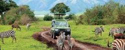 African safari packing tips: Choosing the right duffel
