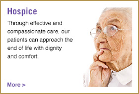 Hospice services button