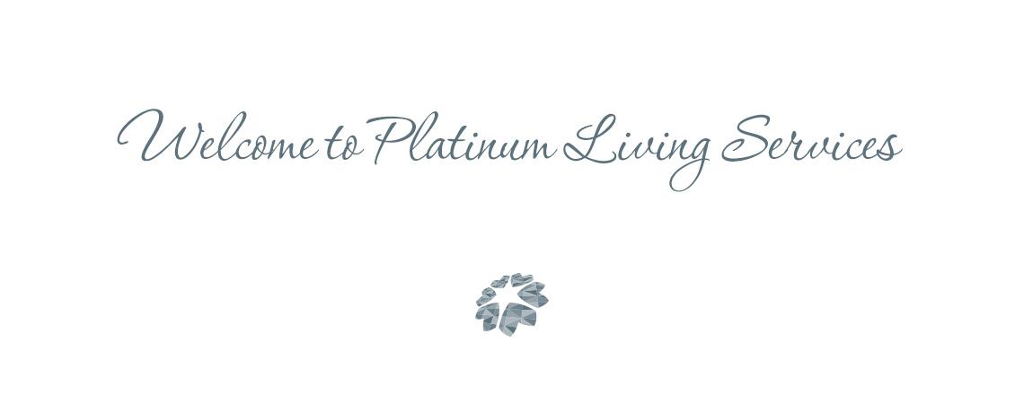 platinum-1140×450-2