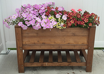 An elevated wood planter with flowers blooming inside.