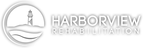 harborview-logo-480×160