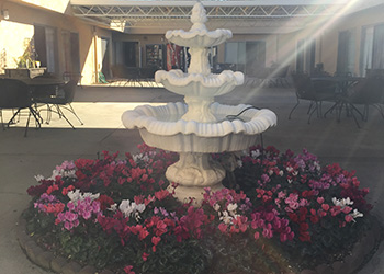 fountain surrounded by flowers