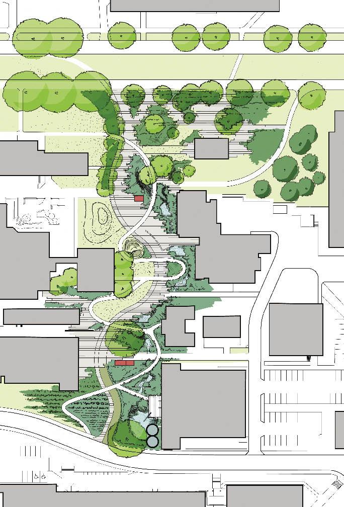 Landscape Design Awards  Orlando