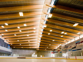 picture from Trout Lake Rink