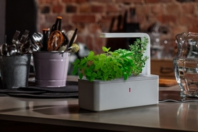 Smart Herb Garden