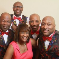 1-900 Band - Party Band / Wedding Band in Memphis, Tennessee