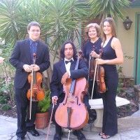 A Houston Wedding & Reception String Music - Classical Music in Bellaire, Texas