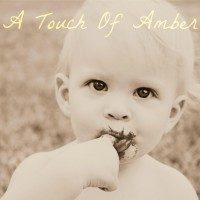 A Touch Of Amber Photogrpahy - Event Services in Fountain, Colorado