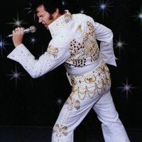 A Tribute to Elvis- Mike Massa - Rock and Roll Singer in Terre Haute, Indiana
