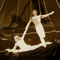 Acrobatic Entertainment Company - Aerialist in San Francisco, California