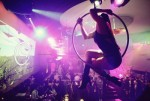 Aerial Hoop at a Private Event