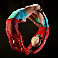 Aerial Fabricators - Contortionist in Clarksville, Tennessee