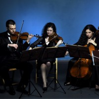 Alla Breve Ensemble - String Quartet in Perth Amboy, New Jersey