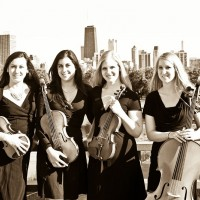 Allium String Quartet - Classical Ensemble in Chicago, Illinois