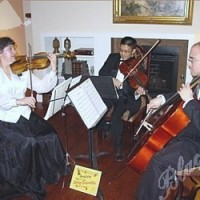 Amadeus String Ensembles - Fiddler in ,