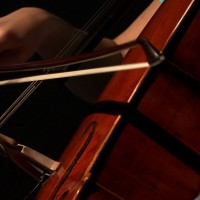 Amateur Cellist - Cellist in Los Gatos, California