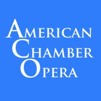 American Chamber Opera Company - Chamber Orchestra in West Chicago, Illinois