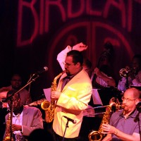 Andy Farber & His Orchestra - Bossa Nova Band in Jersey City, New Jersey