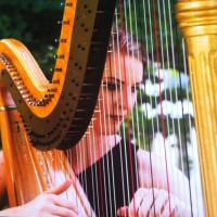 Ann Marie Liss - Harpist in Denver, Colorado