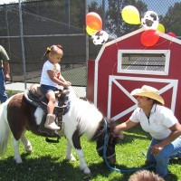 Anthony's pony rides and petting zoo - Pony Party in Modesto, California
